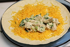 crispy_chicken_wraps_4