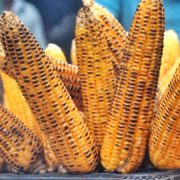 How Long to Cook Corn on the Grill