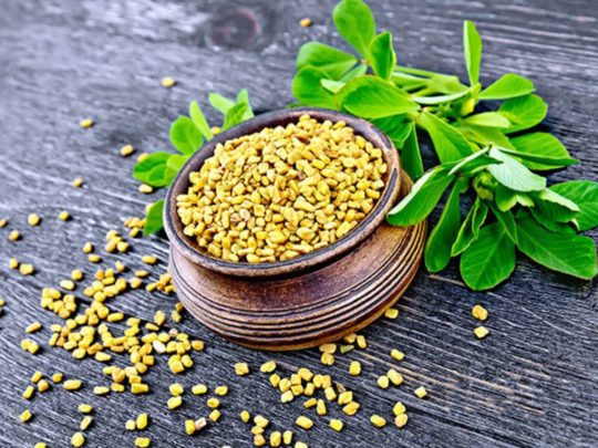 Substitute for Fenugreek Leaves