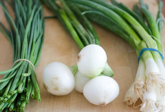 Substitute for Green Onions