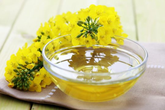 Substitute for Canola Oil
