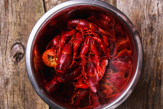 How to Cook Lobster Tails by Boiling
